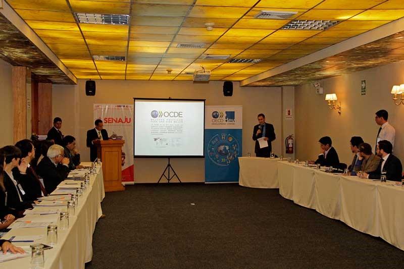 Senaju participa en el Taller de Presentación y Validación de Estudios Gestionados por la OCDE